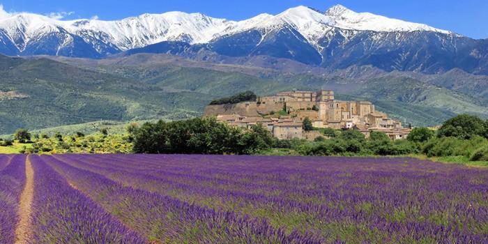 Terres et Mas de Provence, des professionnels passionnés à votre service